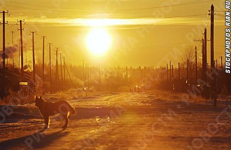 Fuertes heladas en Siberia